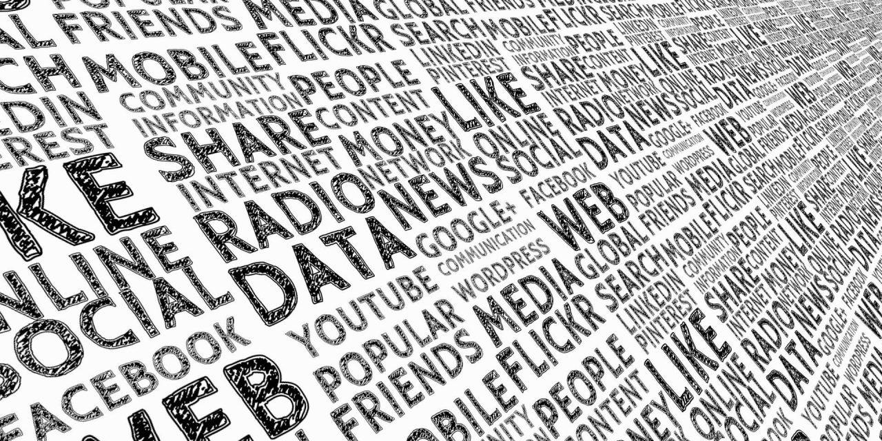 """IRIS Spezial """"Journalismus und Medienprivileg"""" veröffentlicht"""